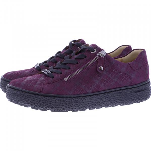 Hartjes / Modell: Phil / Bordeaux Karo Leder / Weite: H / 140462-8700 / Damen Sneakers