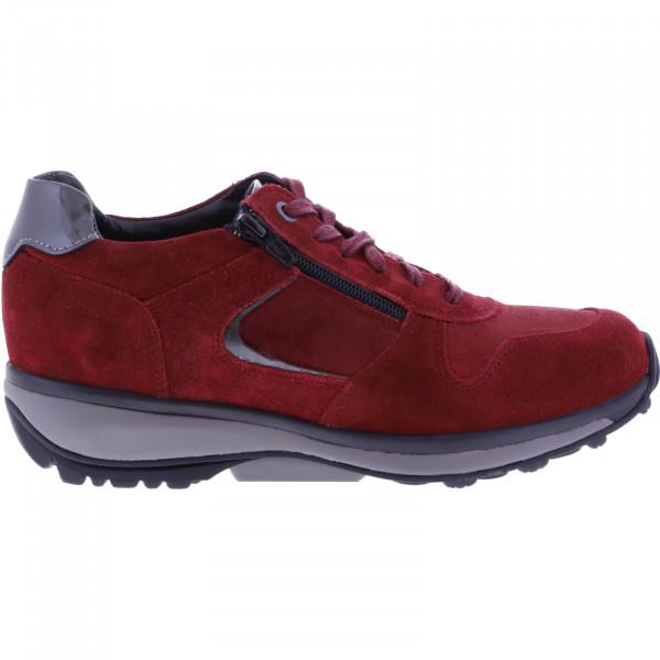 Xsensible / Modell: Jersey / Red Birma Velours / Leder / Art: 300422-771 / Damen Strechwalker