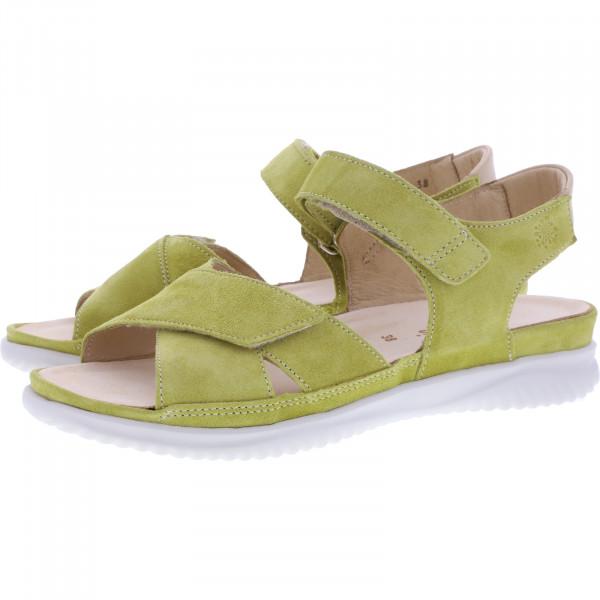 Hartjes / Modell: Breeze II / Cedro-Sahara Leder / Weite: G / 112732-9408 / Damen Sandaletten