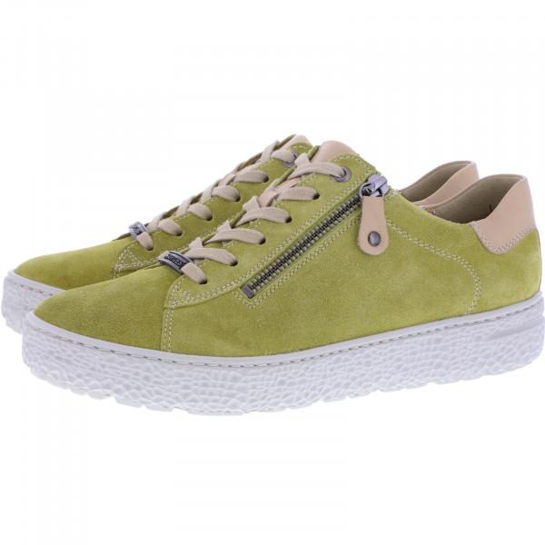 Hartjes / Modell: Phil / Cedro-Sahara Nubukleder / Weite: H / 140162-9408 / Damen Sneakers