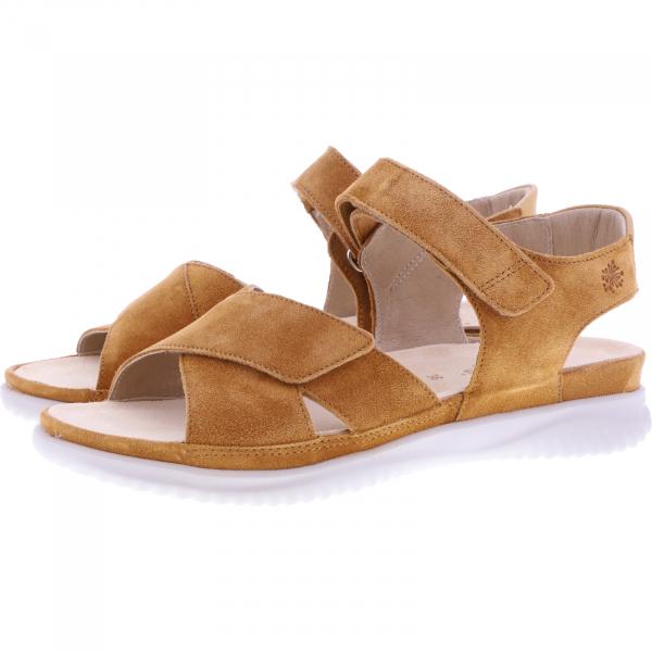 Hartjes / Modell: Breeze / Mandarine/Cognac Veloursleder / Weite: G / 112732-7253 / Damen Sandalen